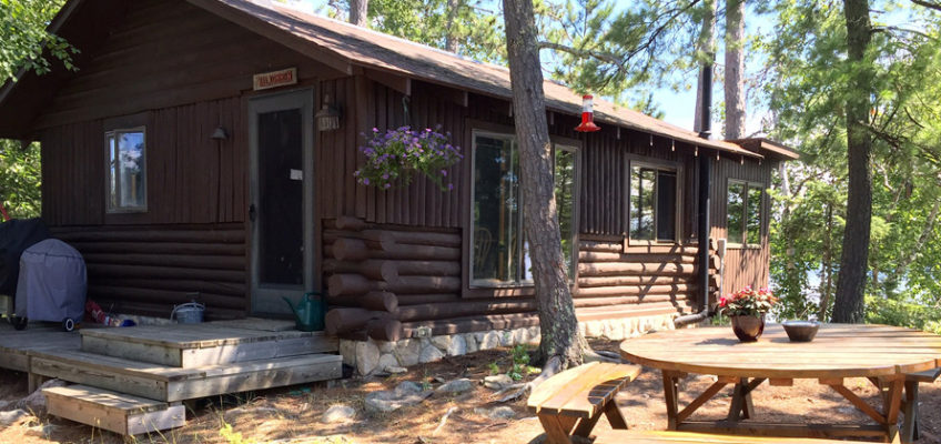 Cabin Cleaning & Mainenance MN