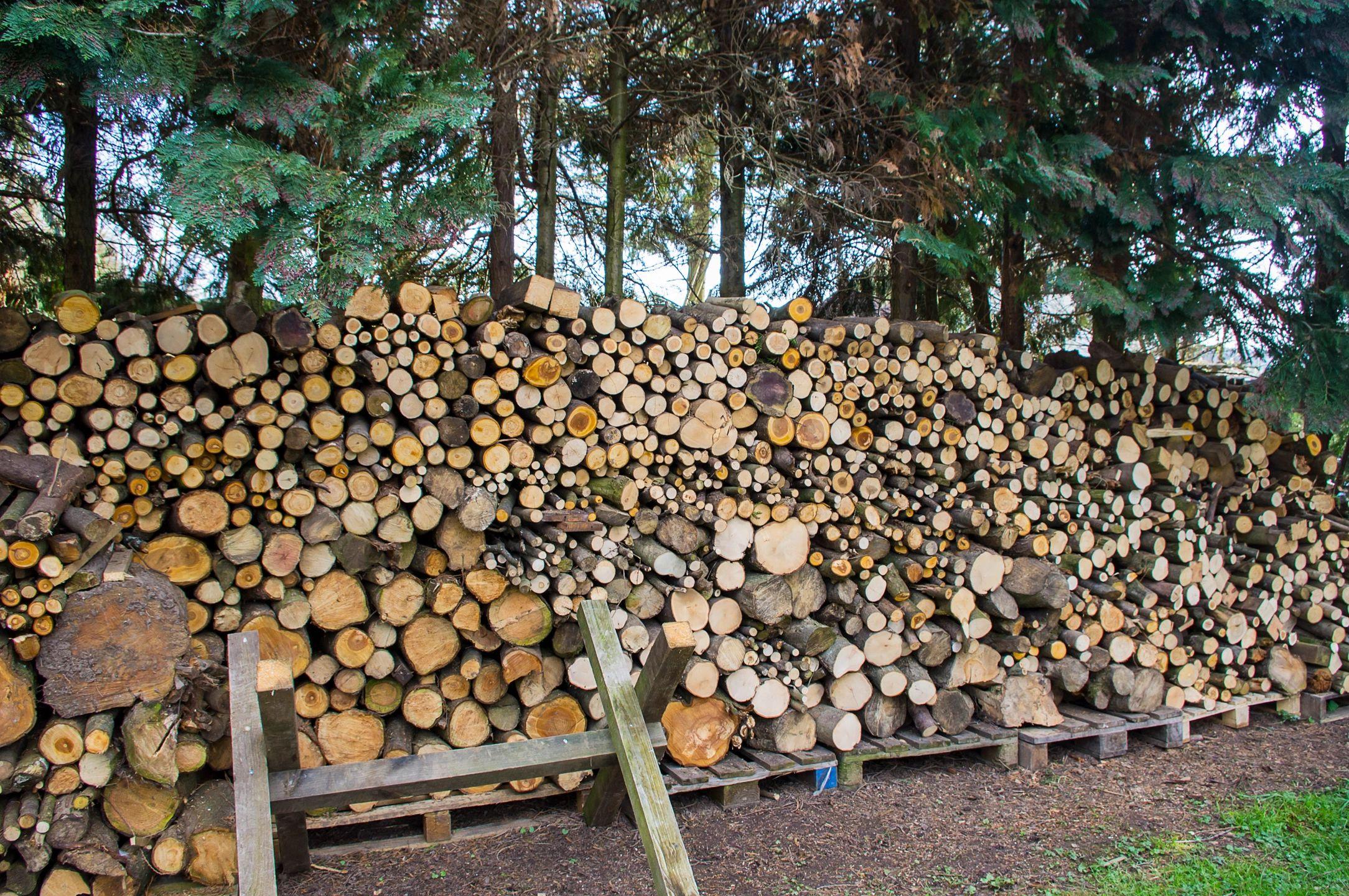 Brainerd Firewood