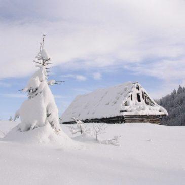 Brainerd Snow Removal Services