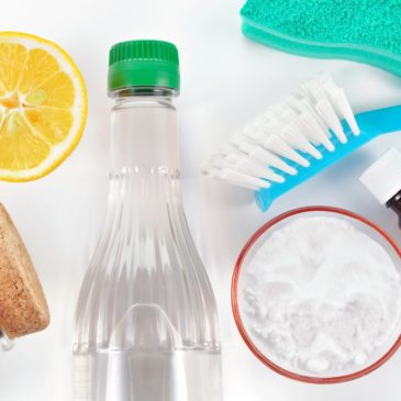 Cabin House Cleaning Schedule Daily, Weekly, Monthly